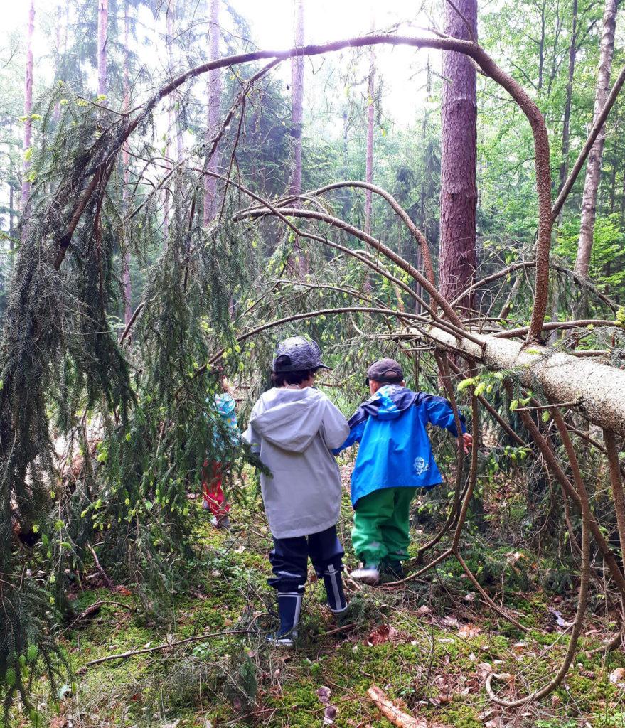 Zwei Kinder erkunden den Wald mit allen Sinnen.